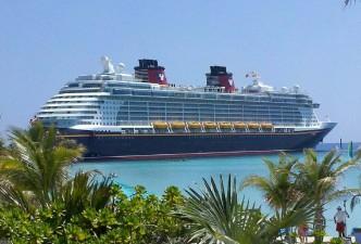 Bay of Island Cruise