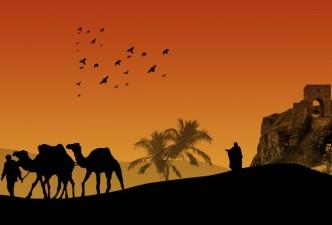 Indias Camel Festival