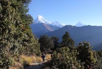 Ghorepani Poon Hill Trek