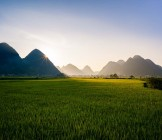 Sapa Valley farming field - Lumle holidays