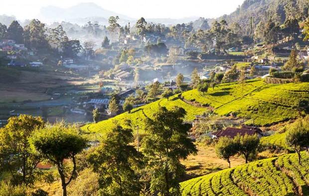 Sri Lanka landscapes - Lumle holidays