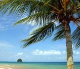 Tioman island, Malaysia - Lumle holidays