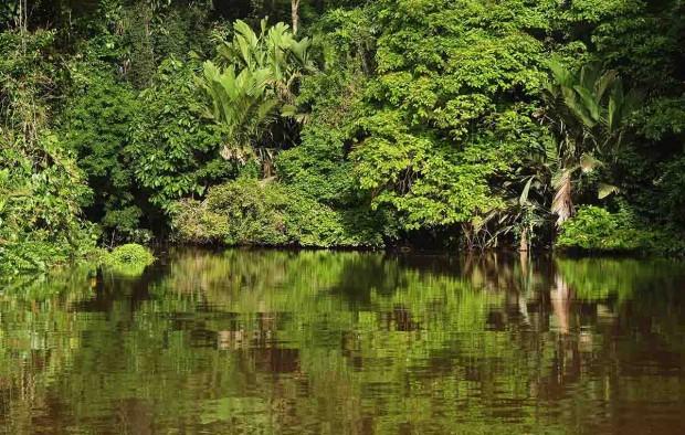 Tortuguero National Park - Lumle holidays